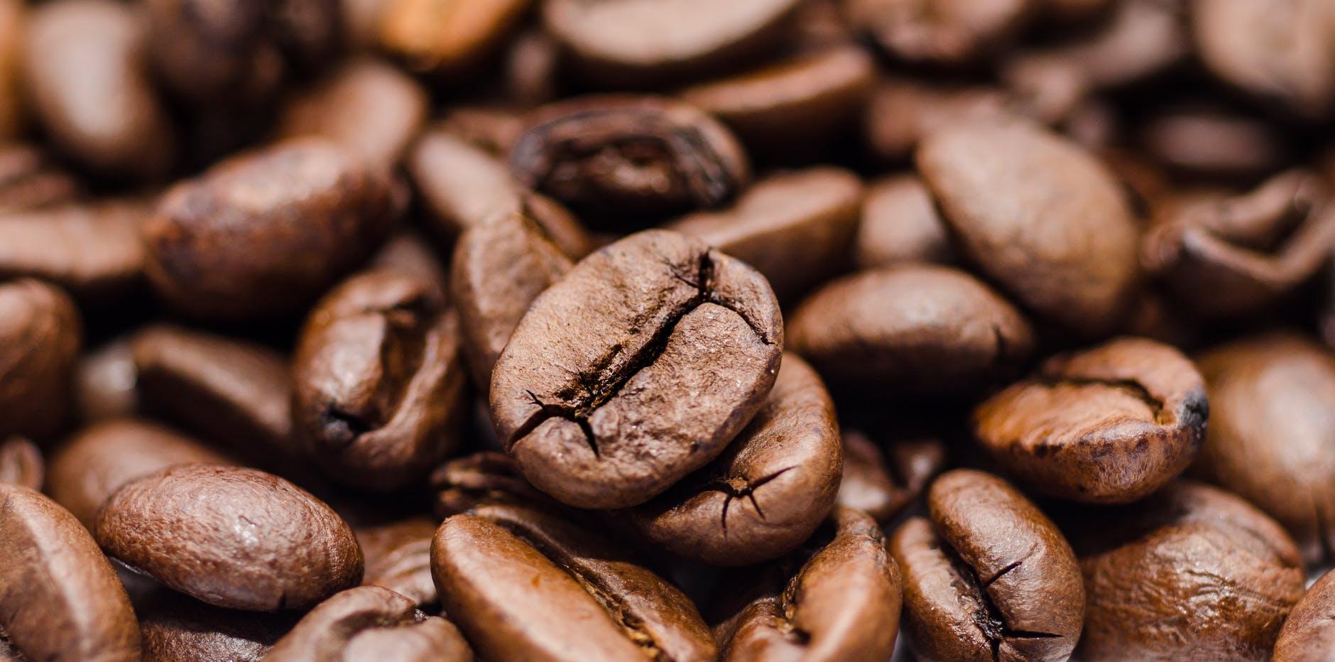 Cafea proaspat prajita Contego