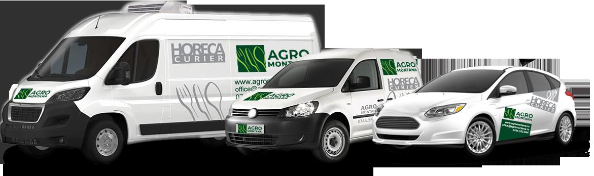 servicii de distributie HoReCa