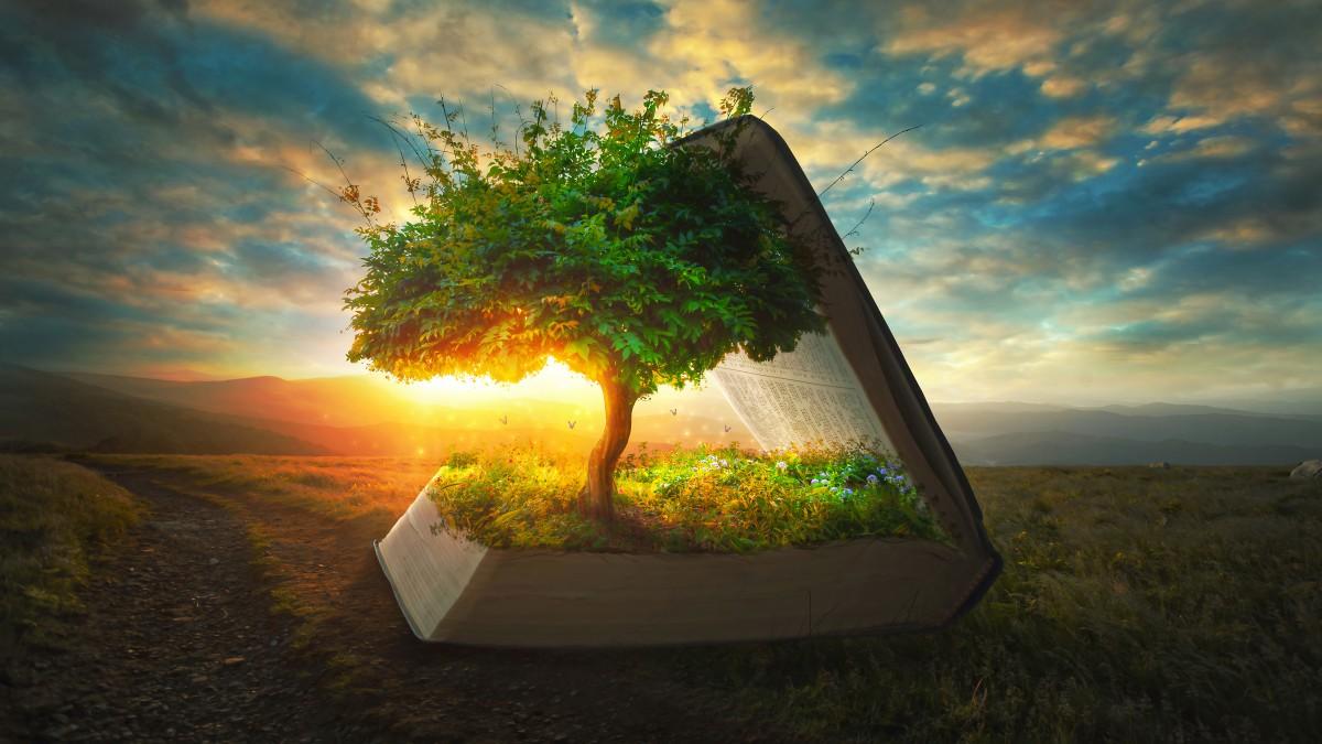 Îți place să citești Descoperă 15 lucruri inedite pe care sigur nu le știai despre cărți! (2)