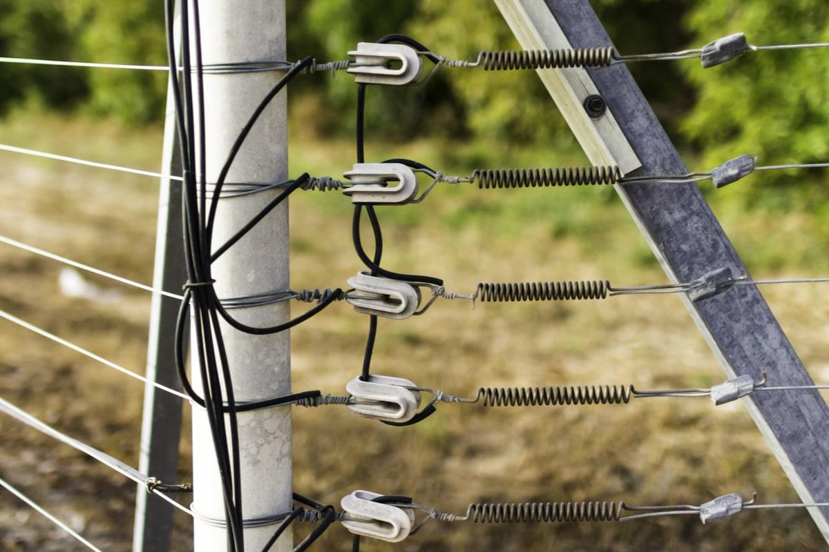 Sfaturi de care să ții cont atunci când alegi gardul electric pentru animale-min